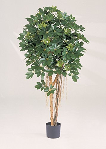 artplants – Künstliche Schefflera Naturell Sienna, getopft, grün, Lianen, 110 cm – Deko Strahlenaralien Baum/Kunststoff Pflanze