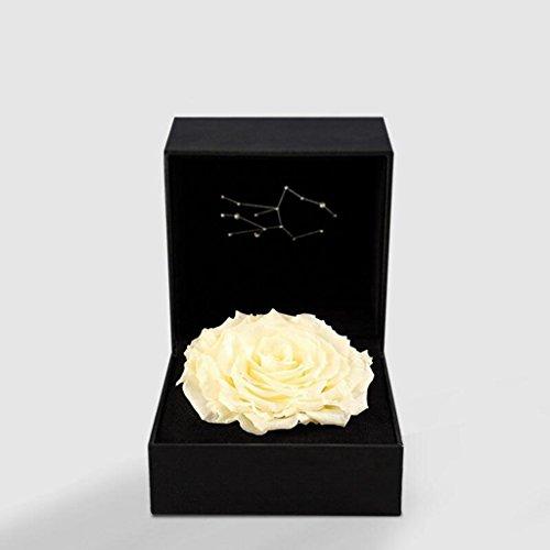 Aoligei Jungfrau Konstellation Rose ewige Blume Geschenkbox kreative romantische dauerhafte Erhaltung