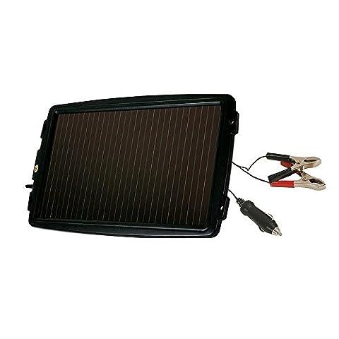 ProPlus 550062 Solarmodul Solarpanel Solarladegerät Batterieladegerät 12Volt GROSS (Pkw Batterieladegerät)