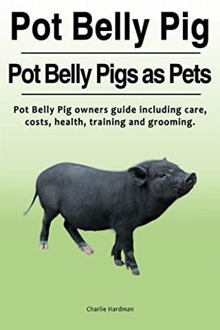 Pot Belly Pig. Pot Belly Pigs as Pets. Pot Belly Pig owners guide including care, costs, health, training and grooming.