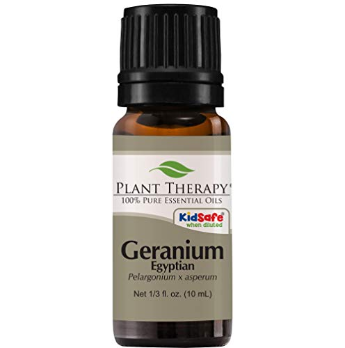 Plant Therapy Geranium Egyptian Essential Oil | 100% Pure, Undiluted, Natural Aromatherapy | 10 mL