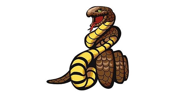 Fahnenmax Autoaufkleber Sticker Schlange Kobra Aufkleber Auto