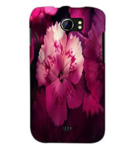 PrintDhaba Flower D-2834 Back Case Cover for MICROMAX A110 CANVAS 2 (Multi-Coloured)