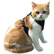EXPAWLORER Escape Proof Cat Harness - Soft Mesh Adjustable Cat Harness Vest for Pet Walking