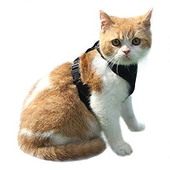 EXPAWLORER Escape Proof Chat-Harnais en Maille Filet Souple réglable Chat Harnais Gilet pour Animal Domestique Marche
