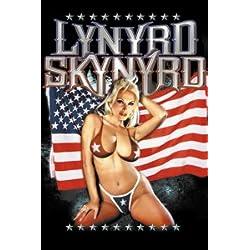 Lynyrd Skynyrd Acero para Frigorífico