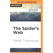 The Spider's Web (Sister Fidelma)