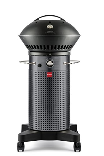 Fuego F21C Model Carbon Steel Fuego Element Gas Grill BBQ Barbecue