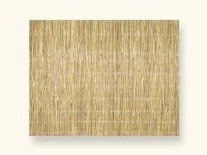 Schilfplatte 2 cm d'épaisseur comme brise-vue et brise-vent et acoustique 2 x 1,5 dimensions :  m pour jardin, terrasse et balcon-opaque à 100 %