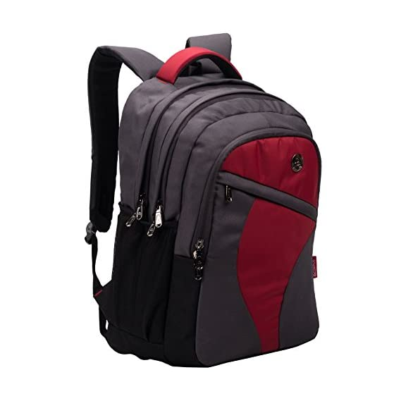 COSMUS Rugged School Bags with Laptop section for Class 6-9 - Cosmus Leeds Grey 33L Polyester waterproof Backpack Bag