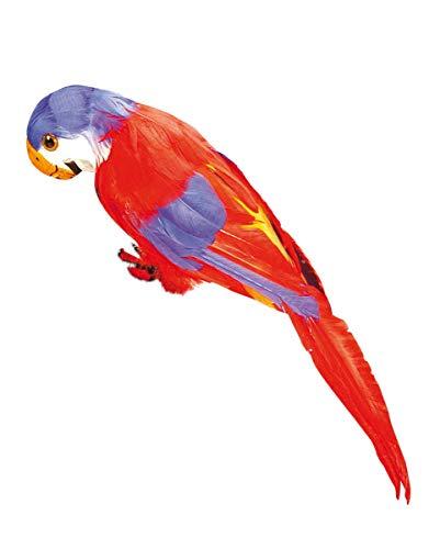 Papagei mit roten und blauen Federn