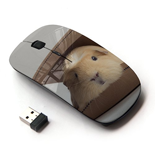 artech-optical-24g-wireless-mouse-guinea-pig-box-rodent-