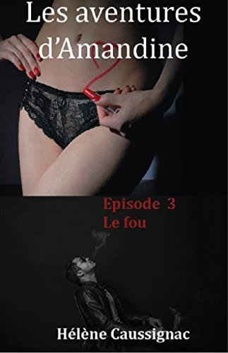 Couverture du livre Le fou (Les aventures d'Amandine t. 3)