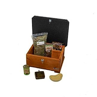 riverside woodcraft hedgehog house starter kit with anti bacteria coating Riverside Woodcraft Hedgehog House Starter Kit With Anti Bacteria Coating 41jT 2BhnPlCL