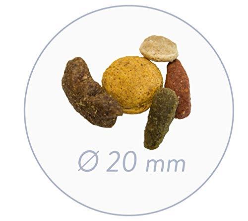 bosch Hundefutter Adult Menü, 1er Pack (1 x 15 kg) - 3