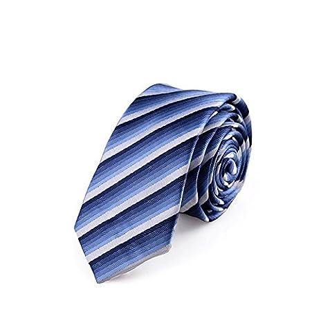 Z-P Mens Elegant Necktie Blue Gradient Stripes Jacquard Tie