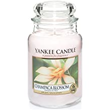 Yankee candle 1302673E Champaca Blossom Candele in giara grande, Vetro,