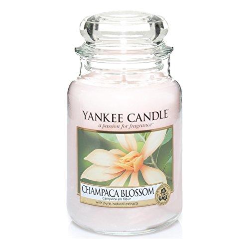 yankee-candle-1302673e-champaca-blossom-candele-in-giara-grande-vetro-rosa-99x98x172-cm