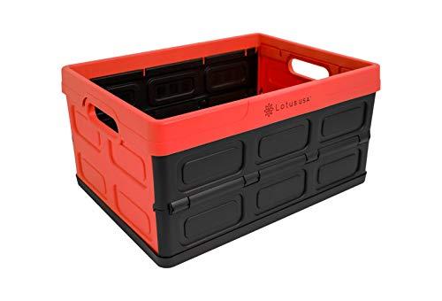 Lotus USA Aufbewahrungskiste, zusammenklappbar, 32 l rot/schwarz (Storage 32 Liter Box Plastic)
