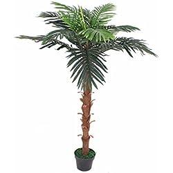 PASAMO 06712 Bonsai, Echtholzstamm, Kunstpflanze 150cm