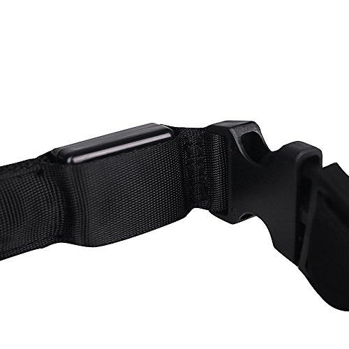 Easylifer LED Halsband Hund Sicherheit Blinkt Leuchthalsband für Hunde, Katzen(Rot, XL) - 4