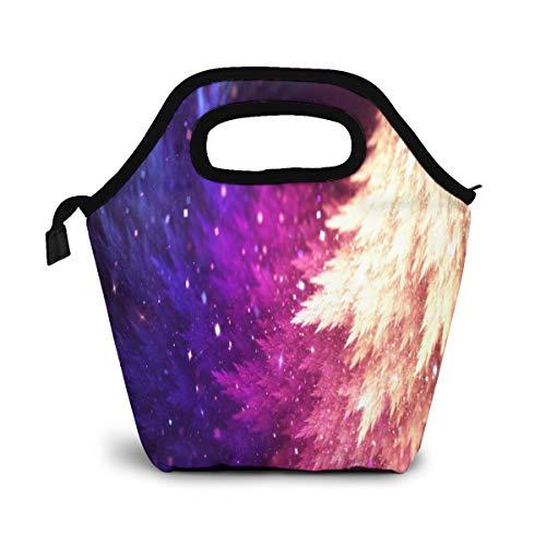 NiWCGP Abgestufte lila Feder Kleine Kühltasche Warm Tasche Lunchbox für Schule Arbeit tragbare Mahlzeit Handtaschen Lebensmittelbehälter Tragetasche für Picknick