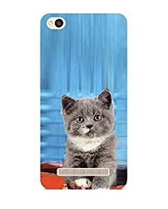 Fiobs Designer Back Case Cover for Redmi 4A :: Redmi MI 4A :: Xiaomi Redmi 4A :: MI 4A :: Xiaomi Redmi MI 4A (Redmi 4A Back Case Cover Natural Cat Image Orange )