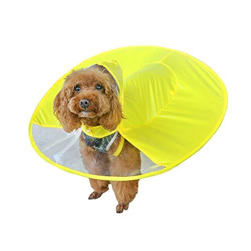 (Amakunft Regenmantel für Hunde, wasserdicht, für Kleine Hunde und Katzen, Gelb)