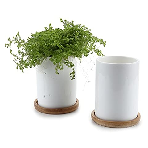 T4U 7CM Ceramic White Cylinder Sucuulent Plant Pot/Cactus Plant Pot With Bamboo Tray Package 1 Pack of 2