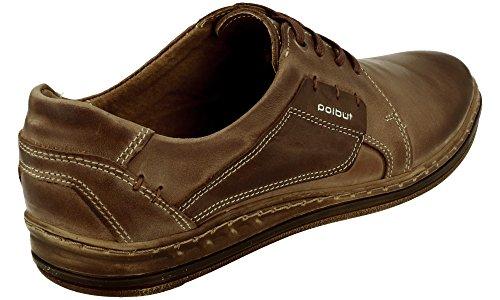 Polbut 395 Classic Homme Cuir Chaussures À Lacets Marron