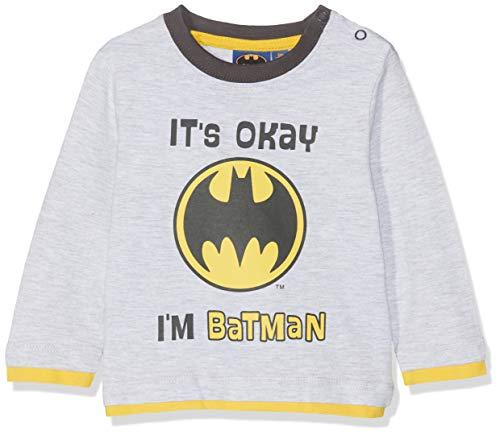 Batman Tshirt Kostüm Kinder - Batman Baby-Jungen 2544 T-Shirt, Gris, 18-24 (Herstellergröße:18 Monate)