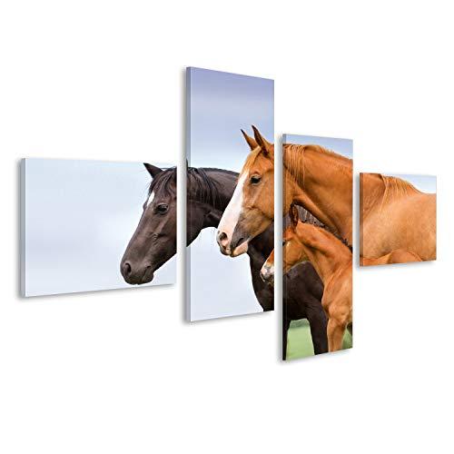Bild Bilder auf Leinwand Portrait von Zwei Stuten und von Fohlen an der Weide Wandbild, Poster, Leinwandbild KRJ