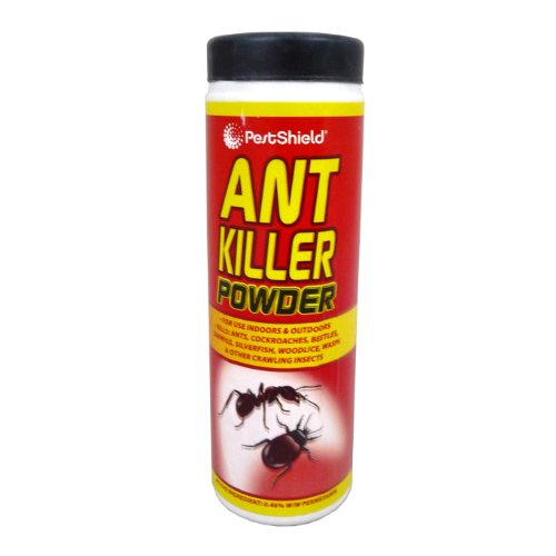 PestShield Ant Killer Poudre cafards Scarabées guêpes cloportes