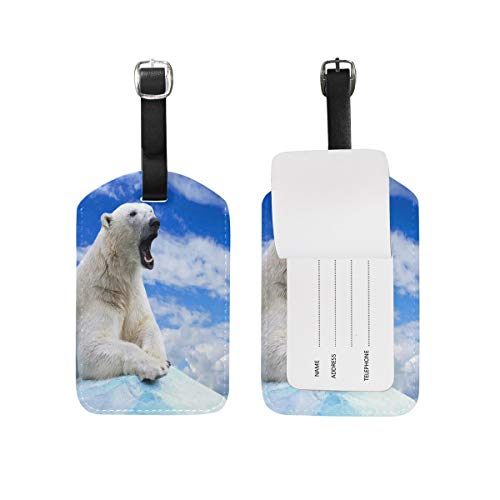 Lovely Bear Sky Cloud Ice Snow Luggage Tags Travel Bag Tag Suitcase 1 Piece Set (Snow White Princess Fashion Set)