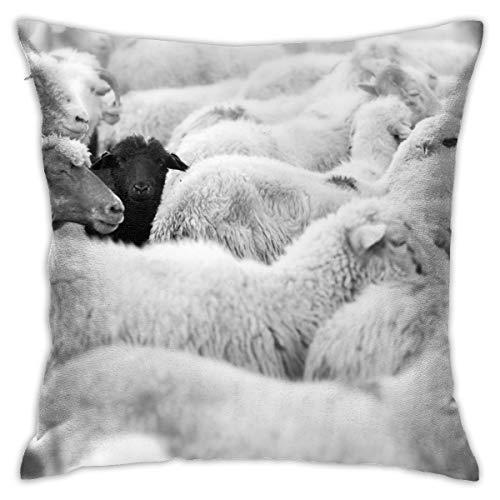 Vcoanyu One Black Sheep Herd Whites Animals Wildlife Natur Throw Pillow Fundas...