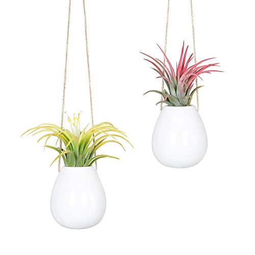 Mkouo 2 Stück Mini Hängeschale für Balkon, Keramik Blumentopf,6 Liter, Perlweiss