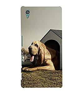 PrintVisa Sweet Home 3D Hard Polycarbonate Designer Back Case Cover for Sony Xperia Z5 :: Sony Xperia Z5 Dual