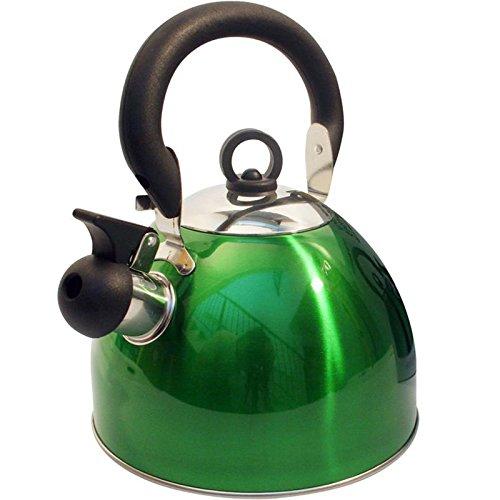 Edelstahl Camping Flötenkessel mit abnehmbarem Deckel 2,5 Liter in Grün - Wasserkessel Wasserkocher Ofenkessel Teekessel