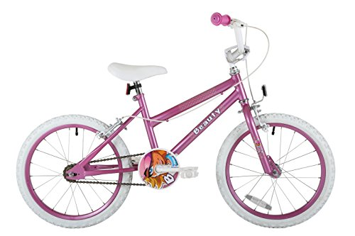 Sonic Beauty Girls Kids Bike, Purple