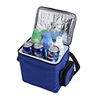 YEXIN Mini Portable Compact Personal Fridge, Cools & Heats, 6 Liter Capacity, Chills 6 12oz cans, 100% Freon-Free & Eco Friendly, Includes Plugs for Home Outlet & 12V Car Charger