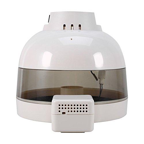 Digitale Incubatrice di uova mini Incubatrice 10automatico controllo della temperatura con display elettronico