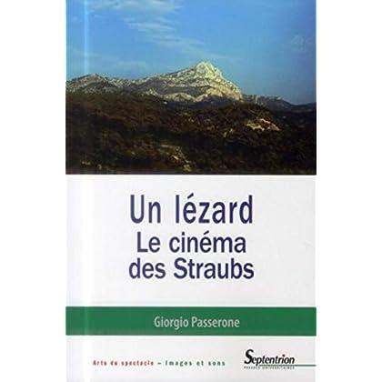 Un lézard : Le cinéma des Straubs