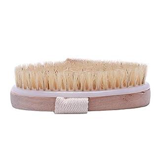 TOOGOO(R) Dry Skin Body Natural Bristle Brush Soft SPA Brush Bath Massager Home Popular New,Wood color,12 * 6.5 * 3.5cm