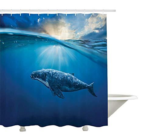 Yeuss-Meerestiere-Dekor-Kollektion, Wal im Wasser Aquatic Sunbeams-Landschaft natürlicher Unterwasser-Tier-Bild-Druck, Bad-Duschvorhang aus Polyestergewebe mit Haken, Marineblau (Wasser Sunbeam)