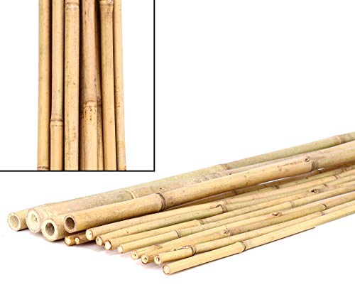 2 2 2cm lange 240cm bambus rohr bambus latten farbige bambusrohre bamboo bambus halbschale bambusstangen bambusstab rohre aus bambus