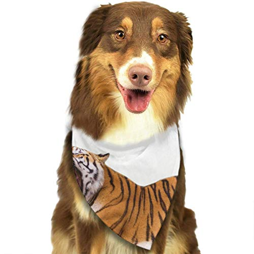 Gxdchfj Ferocious Tiger Fashion Dog Bandana Pet Accessories Easy Wash Scarf -