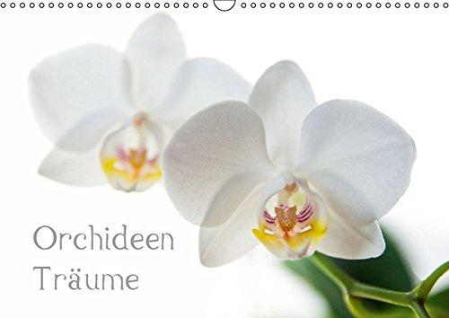 Orchideen Träume (Wandkalender 2016 DIN A3 quer): Fotografien von Orchideen (Monatskalender, 14 Seiten)