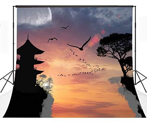 EdCott 10x10ft Chinesischen Stil Hintergrund Große Wildgans Schildkröte Altes Lied Chinesische Klassische Wind Fotografie Hintergrund Fotostudio Hintergrund Requisiten LYP084