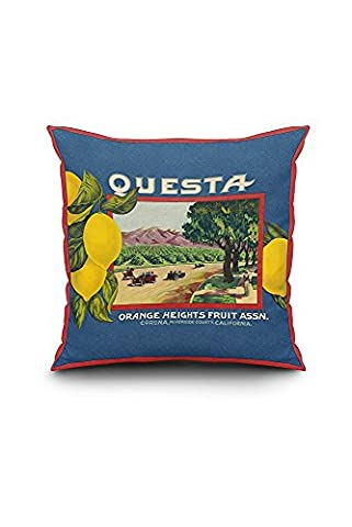 Questa Lemon - Vintage Crate Label (20x20 Spun Polyester Pillow Cover, Black Border)