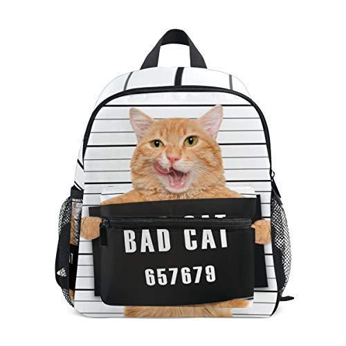 Kids Backpack, Lightweight Preschool Bag for Children Girls Boys, Bad Cat Design Bag